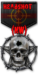 http://nw-clan.3dn.ru/medals/medal_pro_headshot.png