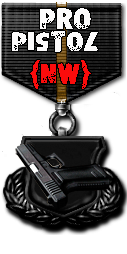 http://nw-clan.3dn.ru/medals/medal_pro_pistol.png